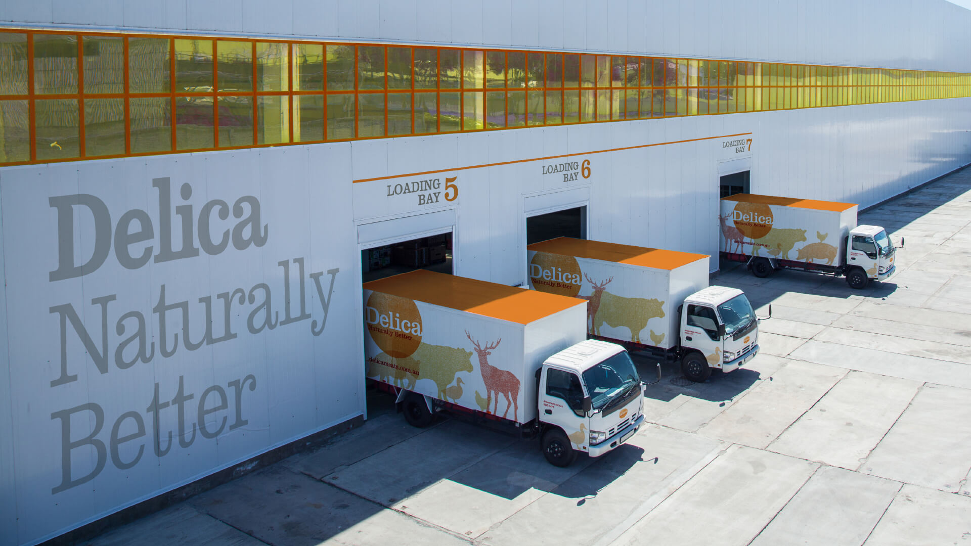 Image featuring Delica Meats delivery vehicles. 3 Delica Meats trucks awaiting deliveries outside their factory, as photographed from above. Helium Design have created a brand identity system for Delica Meats.
