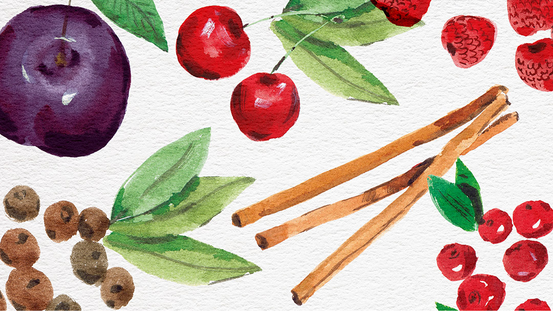 Painted illustrations of fruit and spices, created using watercolour paints.
